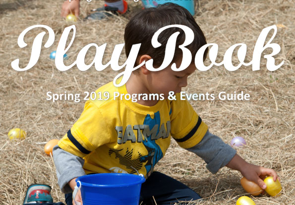 2019 Spring Playbook