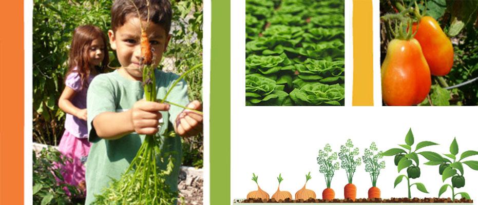 Adopt-a-Garden Program