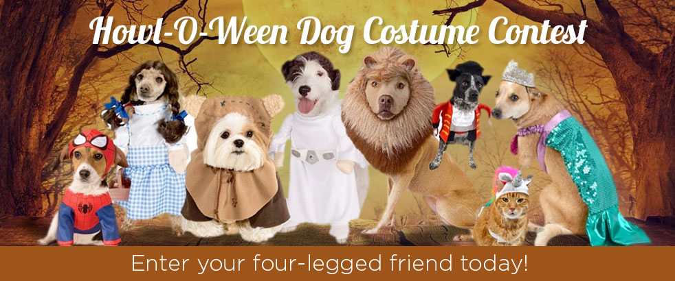 Howl-o-ween Dog Costumes