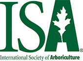 ISA Icon